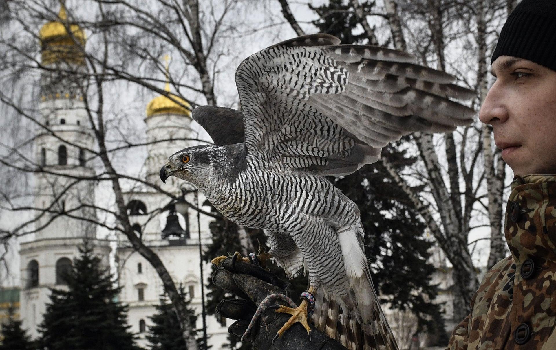 Александр Неменов/Getty Images/Scanpix