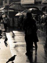 :> cижу и молча сохну / и не нужен мне ваш зонт