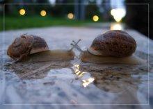 Love... / *****
