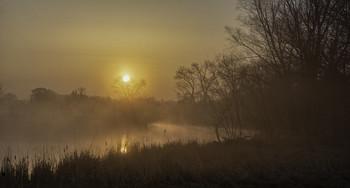 Миколині тумани... / 28.03.2021. ічка Остер, село Бірки.