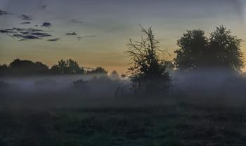 Миколині тумани... / 22.08.2021. Чернігівщина.