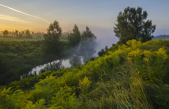 Одно утро лета / Россия. Тульская область. Ясногорский район. Большие Байдики