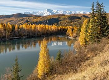 Красавица Чуя. / Золотая осень на Алтае.