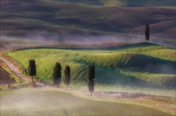 Стелется дымка меж кипарисов... / Окрестности города Пьенца,Тоскана.