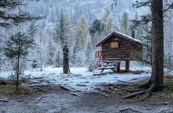 Сказка. / Снег обычное место превратил в небольшую сказку.