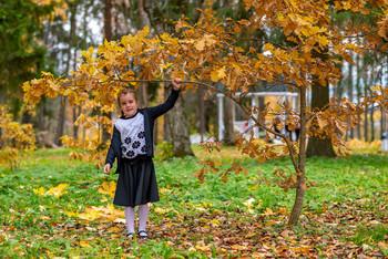 Искусственный листопад / модель Катя Щекутьева