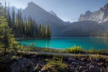НАСТРОЕНИЕ / Тот случай, когда природа создает тебе настроение. Ты, озябший стоишь среди тишины и ждешь. Начинает пригревать утреннее солнце, только что заглянувшее в долину. По прежнему стоит тишина, нарушаемая только еле слышным звоном мошки, радостно мечущейся над водой. Озеро О'Хара, Канада. Заповедник Йохо