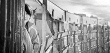 Train / портрет цифра Ленор