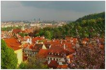 Городской пейзаж / Прага, конечно.