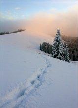 Зимний карпатский этюд #11 / цветА не фотошопные, поверьте на слово ))