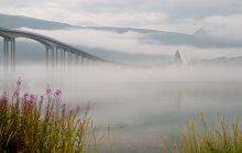 Туман над фьордом / Norway