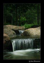 Лесной водопад / *****