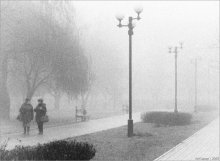 Беседы в туманное утро... / ...где-то бродил по туманным утрам