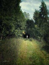 По дороге в темный лес... / .. где ни сказок ни чудес(