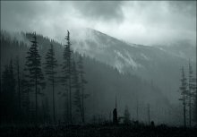 Мрачный пейзажик / *****