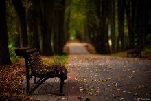 Осеннее настроение / банальный сюжет,  но такое уж настроение...