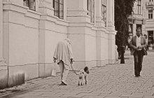 Венские истории. Part1 / Про Вену и про то, как я ее увидел