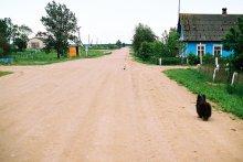 напряжение / гуляли с собакой по деревне и встретили друга