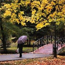 Осенний парк / ......