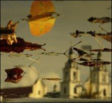 Восеньская пастэль. / Абсталяваньне: здымач, лужына й некалькі хвілін сонца...