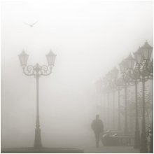 Туманное утро / *****
