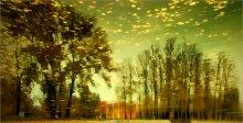 [ autumn sketches ] / ...такая вот осень у меня в голове