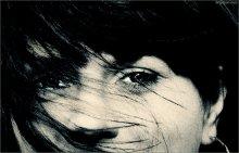 [ W I N D ] / ...ветер в моей голове
