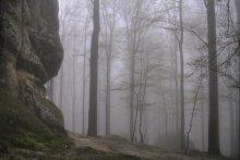 Туманная / на скалах довбуша, карпаты