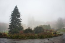 Краков / Вавель; в тумане виднеется собор Св. Станислава и Вацлава