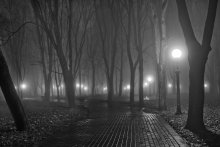 Минские туманы - 2 / ночь туман