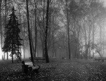 Минские туманы - 4 / Ночной парк