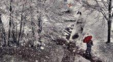 снегопад / ...............