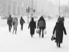 Snow in Minsk / .............