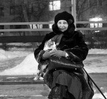 Дама с котом / _____