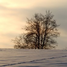 Про зимнее утро / -----