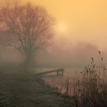 Цвета утреннего тумана / Зима. Утро. Туман