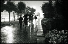 """Из серии """"Дождливое"""" / *****"""