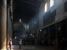 Божественная подсветка / Думаю правильную точку сьемки избрал юный фотограф