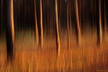 Струи вечернего света / О технике съёмки - тут: http://kin-norway.livejournal.com/115644.html?view=1684156#t1684156