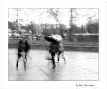 Дождливые тени / ...или парковые призраки...