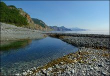 Береговые дали / Охотское море, после отлива в небольшой заводи осталась большая стайка мойвы