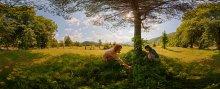 Чернички / Карпаты 2010 7 кадров Фрагмент сферической панорамы в равноугольной проекции. Для правильного восприятия рекомендуется просмотр во флеше http://fertilizermods.elteh.org/panorama/nature/chernichki.html