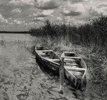 на берегу очень чистой реки / ******