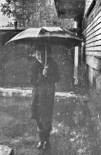 Дождь ... / долго думал, выкладывать или нет ...