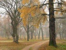 Утро.Осень.В путь... /