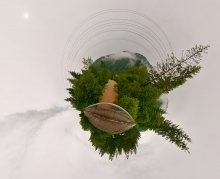 Какао планета / Для правильного восприятия рекомендуется просмотр во флеше http://fertilizermods.elteh.org/panorama/nature/milk/milk.html Карпатская река после ливня. 7 Кадров.