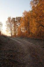 Осенняя / Дорожная осень или дорога осенняя.