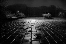 Мокрой осенней ночью... / Минск