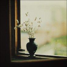 Осень / .......