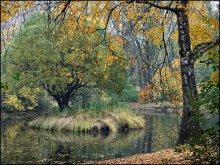 Осень в парке / Осень в дендропарке Екатеринбурга